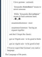 German is the most ambiguous language in the entire universe.