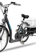 E Bike Lastenrad Pedelec Senioren Dreirad Pedelec Dreirad E Bike