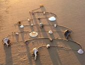Photo of Weihnachten am Strand – 28 verrückte süße Weihnachts-Fotokarten-Ideen – Beach Bliss Living