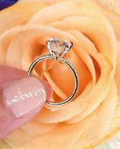 💍 29 anillos de compromiso impresionantes y únicos @PrincessBrideDiamonds   – VerlobungsRing