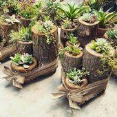40 erstaunliche Sukkulenten Garden Decor Ideas