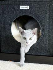 Katze: Schlafplätze – Katzenhöhle für Regal passt auch in Expedit Kallax – ei… – Katzen / Cat