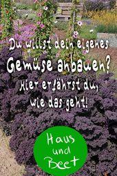 Anbau von Gemüse Kalenderplan Gemüse Anfänger Balkon Hochbeet Topfgarten. GR …   – Gartengestaltung | Garten Gestaltung İdeen