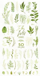 In der Wildnis. 50 einzelne Aquarell florale Elemente, Blätter, Hochzeitseinladung, Suite, Grußkarte, Clipart, Kräuter, Eco, Land, itw