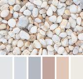 Cappuccino Farbe kombinieren: Welche Wandfarben passen zusammen?