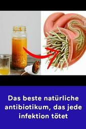 Das beste natürliche antibiotikum das jede infektion tötet
