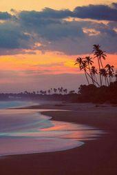 #beach #summer #sun #sand #tan #palm