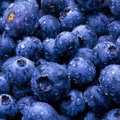 ブルーベリー リキッド – #blue #ブルーベリー #リキッド