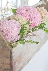(notitle) – Flores silvestres