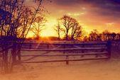 Premium Wandfolie »Tanja Riedel: Sonnenaufgang im Februar«  – Products