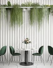 Üppige Zimmerpflanzen erwecken die strukturierte …
