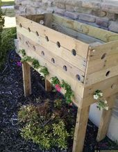 Check out these flowers – DIY pallet planter box f…