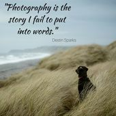 Pictures Quotes to Kickstart Your Inspiration   Click on and Study Pictures