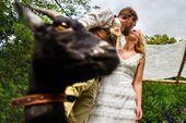 De kus tijdens de bruiloft ceremonie hoorneboeg   grappig moment