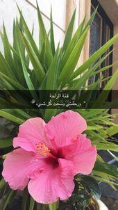 بنات صور جميلات سناب جات صور بنات رمزيات بنات رمزيات صور سناب Mixed Feelings Quotes Arabic Love Quotes Cool Words
