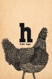 This Explains Why a Chicken Doesn't Need a Rooster to Lay Eggs ...