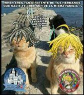Memes e Imágenes Zukulentas de NNT 7w7