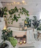Gründe, warum Sie Topfpflanzen nach drinnen bringen müssen