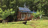 Fernab vom Stromnetz: Mit einem winzigen Eigenheim das Leben auf 4 Hektar umarmen – Hobbyfarmen – HomeSteading
