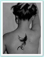 Phoenix Tattoo – Google-Suche – Dessins