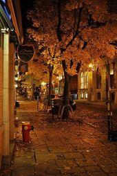 (notitle) – Beautiful Autumn