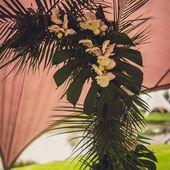 CEREMONIE PART II 🌿 • Ook bij de ceremonie van jullie huwelijk komt veel vo…