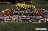 Bilder auf Anfrage, wie man einen Garten schmückt …   – Рассада,огород