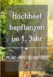 Hochbeet bepflanzen | Bepflanzung für das 1. Jahr