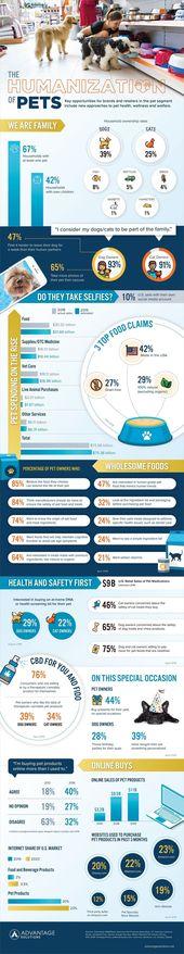 Die Humanisierung von Haustieren #infographic #Animals #Pets