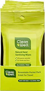 Cleanwell Botanical Hand Sanitizing Wipes Travel Pack 10 Count