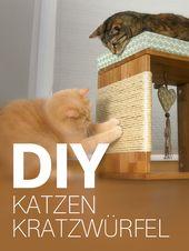 Katzen-Kratzwürfel selber bauen – eine Anleitung