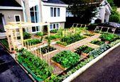 Landscape design front of house ranch flower beds 51 New ideas