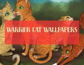 galaxy cat wallpapers – art cat wallpapers – cool cat wallpapers – #laptopcatwalpap …