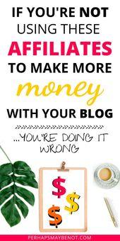 50+ beste Partnerprogramme, mit denen Sie 2019 Geld verdienen können – Blogging For Beginners +