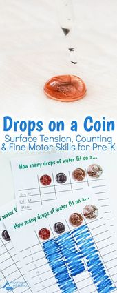Drops on a Coin: A Preschool STEM Activity