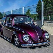 # VW Käfer Club   – Autos