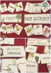 Plants Print & Play Pack – Sharing Kindergarten