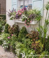 Flower Field Concepts: 10 Methods To Create Lovely Window Bins – Gardening @ From Home To House