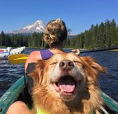 Funny Animal Pictures Wackyy Picdump of the Day #3 – 25 Pics – Wackyy