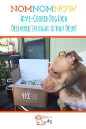 Nomnomnow Fresh Dog Food Company Dog Food Recipes Pet Health Care