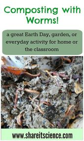 Composting with Worms! A Great Activity for School or Home 2
