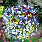 41 Gorgeous Flower Hanging Garden for Spring –