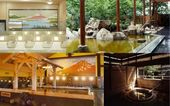 11 Recommended Hot Springs In And Around Tokyo | M…