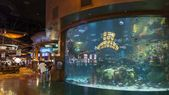 Hackers stole casino's high-roller database using the lobby fish tank