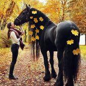 @Regran_ed from Pferdezauuber – Wow 😍 -> by @horsesoulmates *werbung* •• #q mögt ihr Herbst ? 🍂 #a omg ich liebe ihn 🤩 •• Markier Fr…