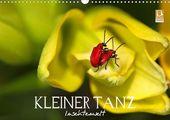 Kleiner Tanz – Insektenwelt – CALVENDO Kalender von Vronja Photon –  #calvendo #calvendogold #kalender #fotografie