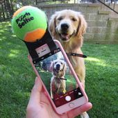 Pooch Selfie Smartphone Accessory   – For the Fur Babies