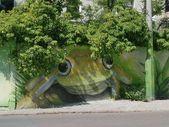 Street Art Frog – #Art #frosch #street   – Straßenkunst
