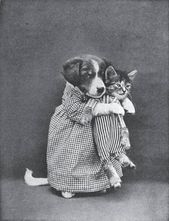 12 Adorably Weird Classic Images Of Puppies