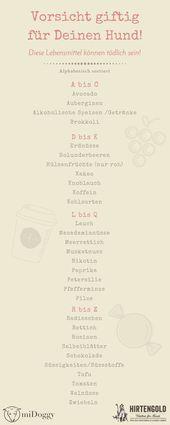 Vorsicht giftig! Weintrauben und weitere giftige Lebensmittel und Pflanzen für Hunde